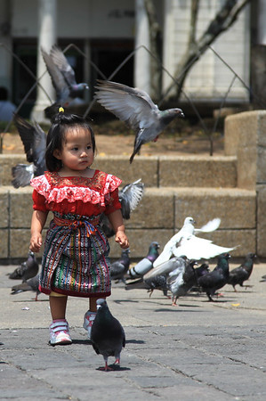 Mała Gwatemalka