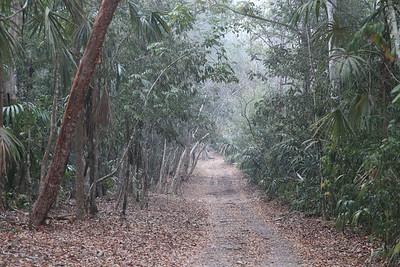 Drogą do Tikal