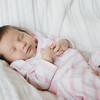Gwen Newborn0004