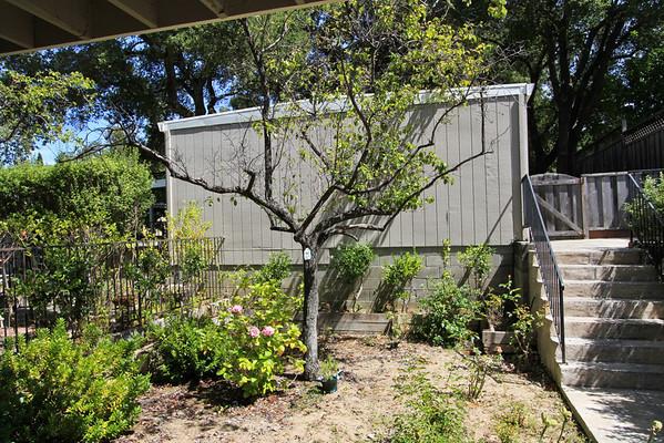 14467 Oak St, Saratoga