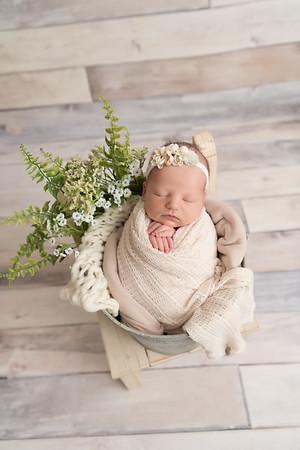 Gwendolyn G. • Newborn