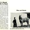 Horse Talk Senior's Mount To Ride in Hunt