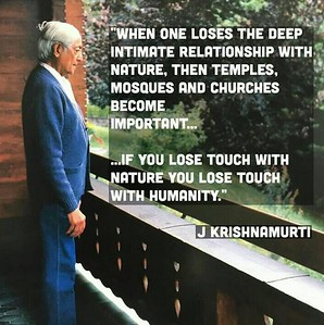 When one loses the #deep #intimate #relationship with #nature, then #temples, #mosques and #churches become important... ... If you lose touch with nature you lose touch with humanity.  #JidduKrishnamurti  #gyan #wisdom #knowledge