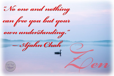 """No one and nothing can free you but your own understanding.""  Ajahn Chah"