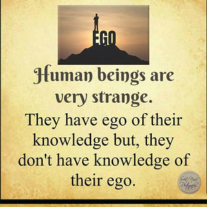 Human beings are very strange.  They have ego of their knowledge but, they don't have knowledge of their ego.  #gyan #knowledge #truth #wisdom