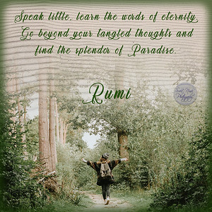 Speak little, learn the words of eternity. Go beyond your tangled thoughts and find the splendor of Paradise.  #Rumi #gyan  #knowledge #truth #wisdom #quote