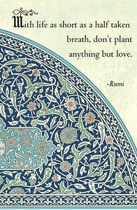 With #life as short as a half taken #breath,  don't plant anything but #love.  #Rumi #gyan  #wisdom #knowledge