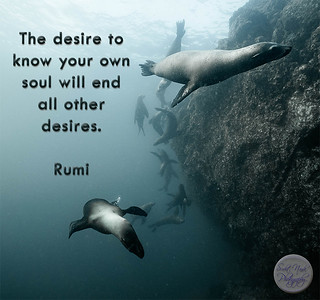 The desire to know your own soul will end all other desires.  #Rumi #gyan #knowledge  #truth #wisdom #quote