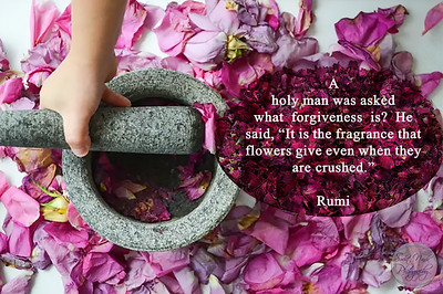 "A holy man was asked what forgiveness is? He said, ""It is the fragrance that flowers give even when they are crushed.""  #Rumi  #gyan #knowledge #truth #wisdom #quote"