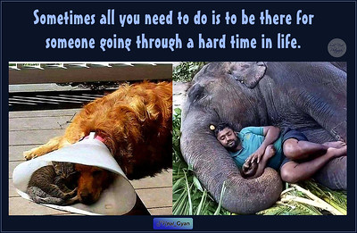 Sometimes all you need to do is to be there for someone going through a hard time in life.  #care #compassion #gyan #wisdom #spiritual #quote #SNtial_Gyan