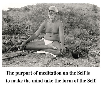 The purport of meditation on the Self is to make the mind take the form of the Self.  Sri Ramana Maharshi #SriRamanaMaharshi #gyan #wisdom #knowledge
