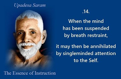 When the #mind has been suspended by #breath #restraint, it may then be #annihilated by #singleminded #attention to the #Self.  #SriRamanaMaharshi #gyan #wisdom #knowledge