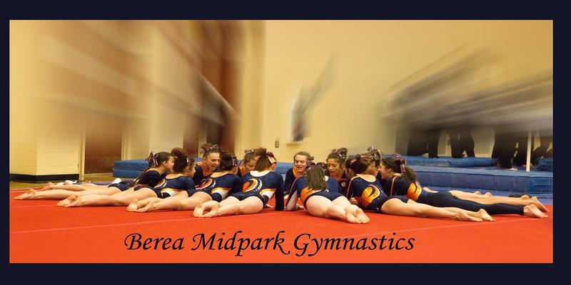 Gymnastics Meet 1/17/15