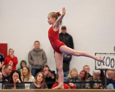 2017 Orca Invitational Gymnastics Competition