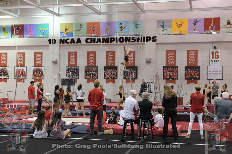 Fans watch the Gymdogs practice
