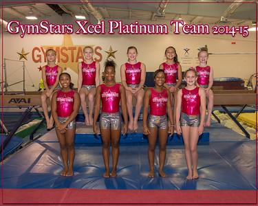 Excel Platinum Team 1