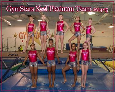 Excel Platinum Team 2