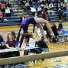 AW Gymnastics Conference 14 Championship-4