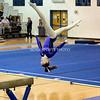 AW Gymnastics Conference 14 Championship-11