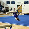 AW Gymnastics Conference 14 Championship-10