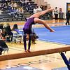 AW Gymnastics Conference 14 Championship-12