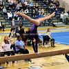 AW Gymnastics Conference 14 Championship-9