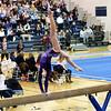 AW Gymnastics Conference 14 Championship-2