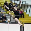 AW Gymnastics Conference 21 Championship-6