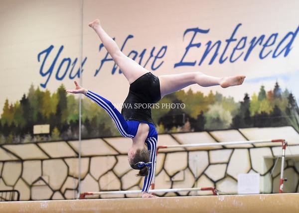 AW Gymnastics 2016 Group 4A-5A Regional Championships-392