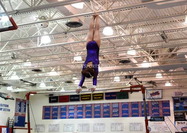 AW Gymnastics 2016 Group 4A-5A Regional Championships-197