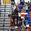 AW Gymnastics 2016 Group 4A-5A Regional Championships-11
