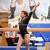 AW Gymnastics 2016 Group 4A-5A Regional Championships-233