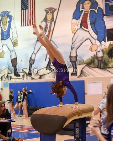 AW Gymnastics 2016 Group 4A-5A Regional Championships-78