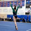 AW Gymnastics 2016 Group 4A-5A Regional Championships-177