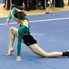AW Gymnastics 2016 Group 4A-5A Regional Championships-208
