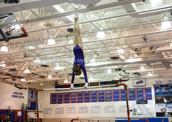 AW Gymnastics 2016 Group 4A-5A Regional Championships-192