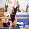 AW Gymnastics 2016 Group 4A-5A Regional Championships-232