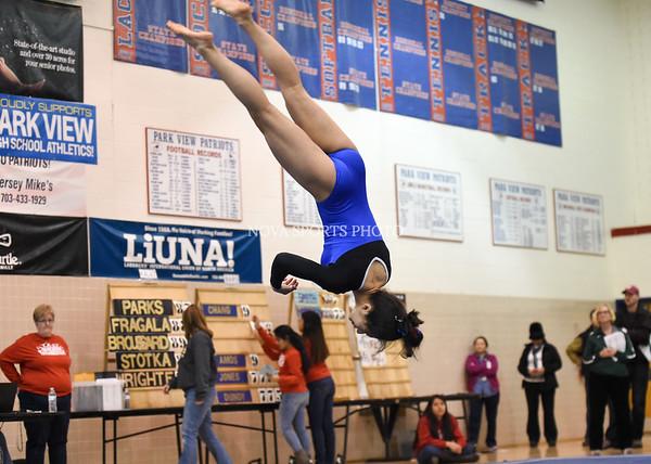 AW Gymnastics 2016 Group 4A-5A Regional Championships-388