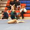 AW Gymnastics 2016 Group 4A-5A Regional Championships-317