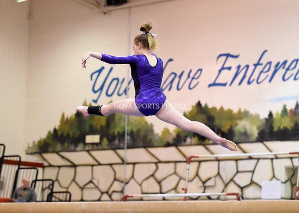 AW Gymnastics 2016 Group 4A-5A Regional Championships-310