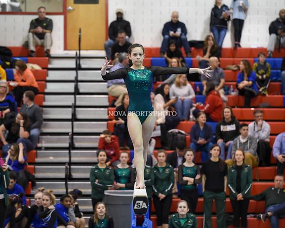 AW Gymnastics 2016 Group 4A-5A Regional Championships-70