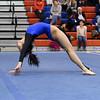AW Gymnastics 2016 Group 4A-5A Regional Championships-375