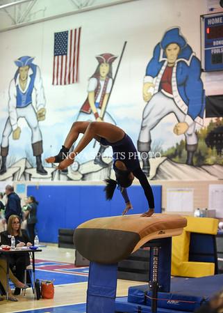 AW Gymnastics 2016 Group 4A-5A Regional Championships-40