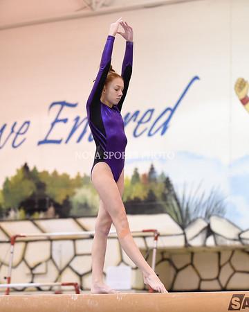 AW Gymnastics 2016 Group 4A-5A Regional Championships-332
