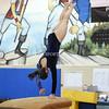 AW Gymnastics 2016 Group 4A-5A Regional Championships-56