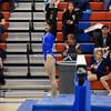 AW Gymnastics 2016 Group 4A-5A Regional Championships-152