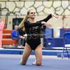 AW Gymnastics 2016 Group 4A-5A Regional Championships-230