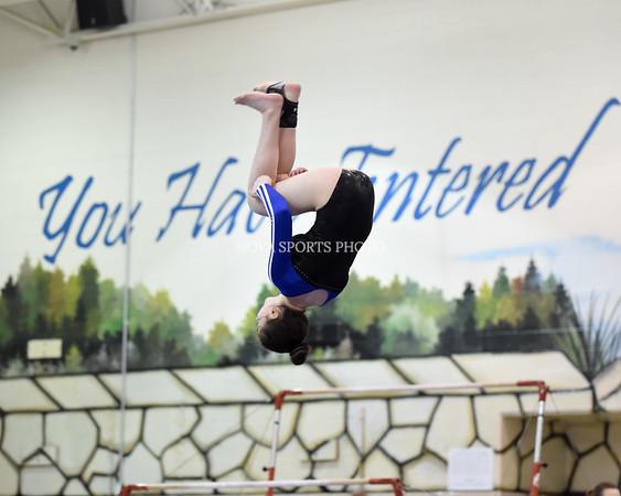 AW Gymnastics 2016 Group 4A-5A Regional Championships-378