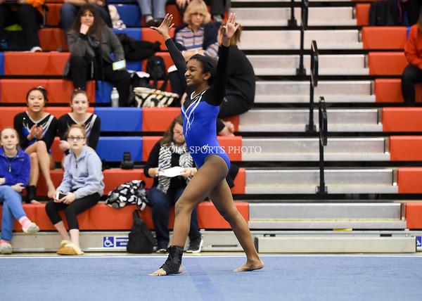AW Gymnastics 2016 Group 4A-5A Regional Championships-330