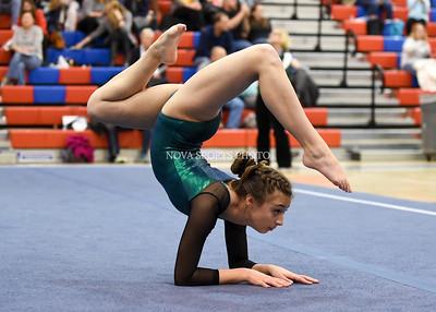 Gymnastics: 2016 Region 4A/5A Championships 2.10.16